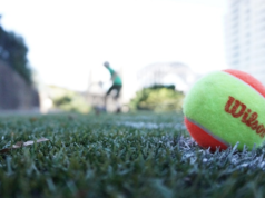 Wilson tennis ball on a grass court