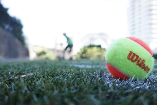 Wilson tennis ball on a grass court